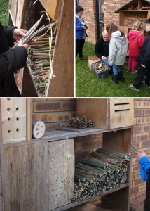 """Mise en place de tiges de bambou dans le """"grand hôtel"""" par les enfants de CE1"""